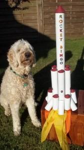 loo-rocket2